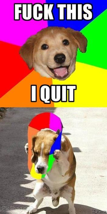 Advice Dog quits