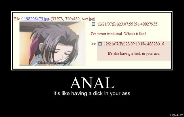 Anal is like having a dick in your ass