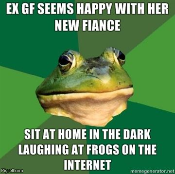 Laughing at frogs on the internet.