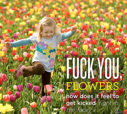 Flowers get kicked right in the face