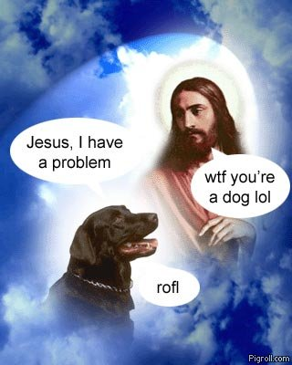 Jesus and a problem bothered dog