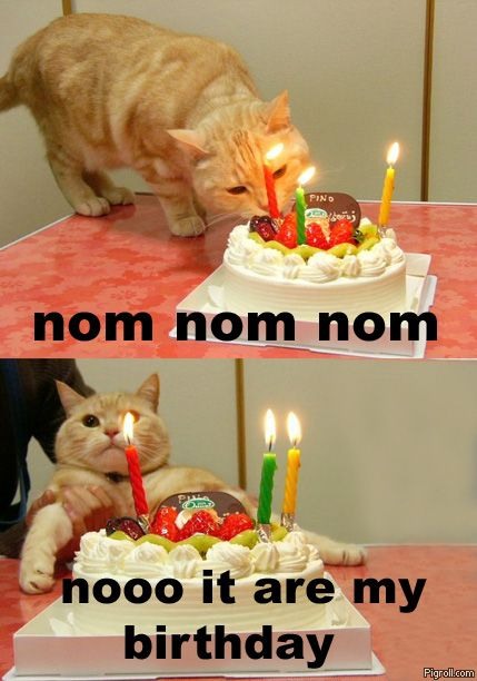 Nooo, it are my birthday!
